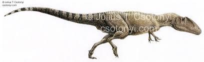 carcharodontosaurus size carcharodontosaurus