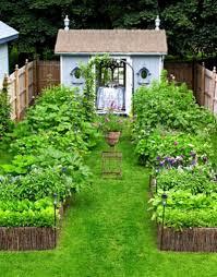 Garden Plot Design Ideas Small Narrow Garden Ideas Home Decorating Ideas Interior