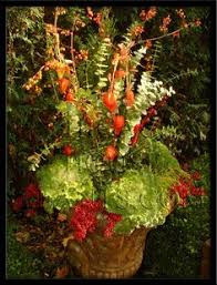 Small Picture Autumn Garden Container Designs by Tu outdoors Pinterest