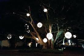 outdoor tree lighting ideas. Rustic How To Decorate Outdoor Trees With Lights W3347422 Ideas  Tree Lighting