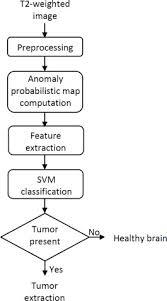 Brain Tumor Presence Detection Flow Diagram Download