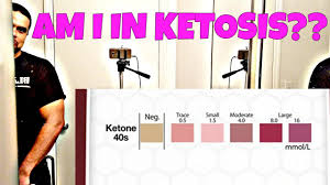 Ketone Test Strips Results Ketosis Diet Keto Ketosis Test Ketostix Vlog 2