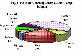 Indian Economy Pie Chart Best Description About Economy