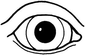 Small Picture eyes coloring page eyes colouring pages coloring pages for kids 0