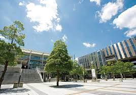 大東 文化 大学 合格 発表