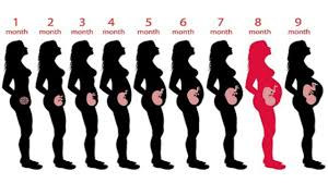 Diet Chart During 8th Month Of Pregnancy Diet Plan For 8th Month Pregnancy Foods To Eat Avoid
