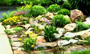 fy rock garden ideas river to genial small yards yard along with design space designs how
