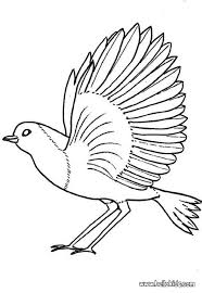 Small Picture Robin coloring pages Hellokidscom