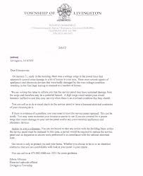 Town Of Livingston Letter Jcp L Power Surge
