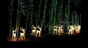 holiday lights show at coastal georgia botanical gardens savannah 2016