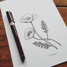 736x736 296 best drawing ideas images on drawings drawing