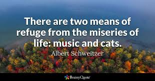 Bonhoeffer Quotes New There Are Two Means Of Refuge From The Miseries Of Life Music And