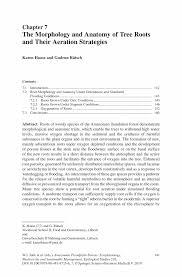 descriptive essay about nature auto finance manager cover letter descriptive essay about a nature scene 000 descriptive essay about a nature scenehtml