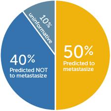 Um Chart Um Pie Chart Impact Genetics Impact Genetics