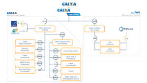 Ownership Organizational Chart Ownership Structure Caixa Seguridade