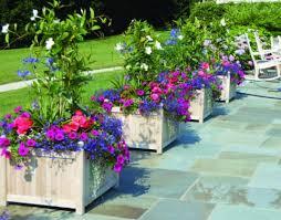 winter outdoor flower pot arrangement ideas