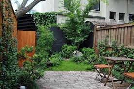 Small Picture Garden Plants North Shore Sydney Landscapers Sydney