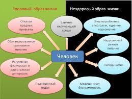 Нездоровый образ жизни реферат > найдено в каталоге Нездоровый образ жизни реферат