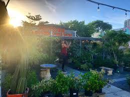 midtown garden center 159 photos 35 reviews nurseries gardening 2600 ne 2nd ave wynwood miami fl phone number yelp