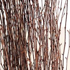 Preserving Tree Branches For Decoration Dried Decorative Branches
