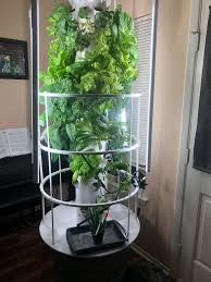 hydroponic tower garden filled with herbs and other veggies 87 points 20 comments submitted 9 months ago by burgisdead to r gardening
