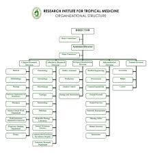 Executive Branch Of The Philippines Organizational Chart Organizational Structure Research Institute For Tropical