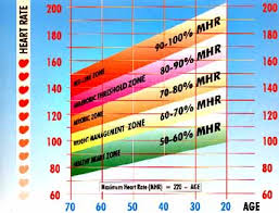 Ideal Heart Rate To Burn Fat Chart Target Heart Rate Training Zones