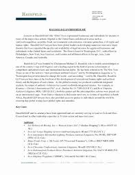Physical Therapy Resume Format Inspirational Impressive