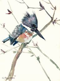 belted kingfisher original watercolor painting 12 x 9 in gray blue bird art