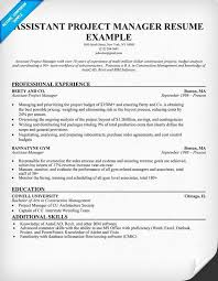 Resume Examples For Assistant Construction Project Manager Cool