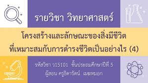 DLTV-P.5 วิชาวิทยาศาสตร์ ป.5 29/06/63 พร้อมเฉลยใบงาน