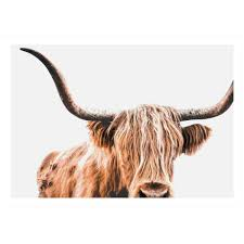 sku demo1207 highland cow printed wall art is also sometimes listed under the following manufacturer numbers dm577 29 7x42 dm577 50x70 dm577 60x90