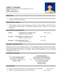 5 Sample Of Resume For Job Application Basic Job Stylish Sample
