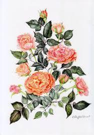 Alysia Hunt | Roses | EAC Art Awards
