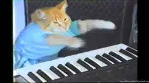 Ozzy Osbourne + Keyboard Cat (Who The ...