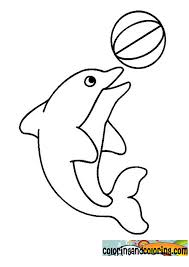 Small Picture Coloring Page Dolphin Kids Coloring Free Kids Coloring