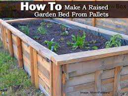a raised garden bed from pallets