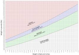 Chakat Bmi Chart Inches Feet And Pounds Version 2 By