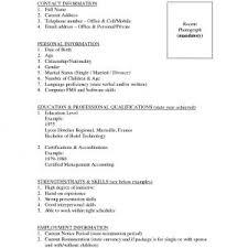 Sample Resume Portfolio Accountant New Resume Template Job Sample