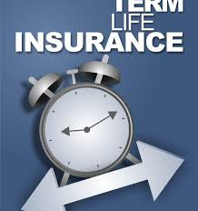 term life insurance quotes for seniors simple term life insurance quotes for seniors homean quotes