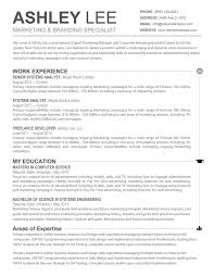 Resume Templates For Mac Word Captivating Word Resume Template Mac