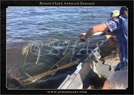 Pulling unused waste nets out of the water. - Byron Hart African Safaris |  Facebook