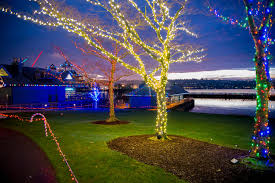 Zoo Lights Seattle Christmas Lights In Seattle 2020 Dates Map
