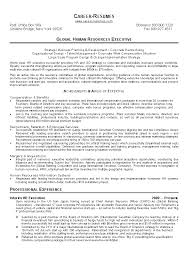 Human Resources Resumes Human Resources Hr Resume Template Example