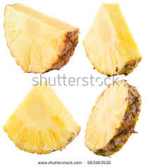 pineapple slice png. set of pineapple slices isolated on the white background slice png