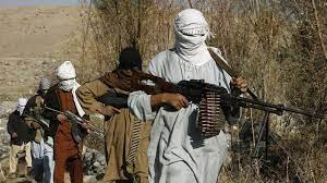 طالبان تسيطر على مزيد من الولايات الأفغانية وواشنطن تتدخل - North press  agency