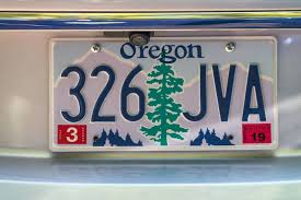what is the vehicle registration number