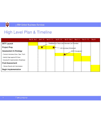 Example Of A Project Timeline 9 High Level Project Plan Examples Pdf Examples