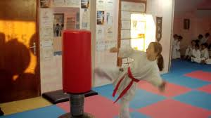 heavy bag karate workout cheetah fighters