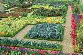 Small Picture Veggie Garden Design Garden ideas and garden design
